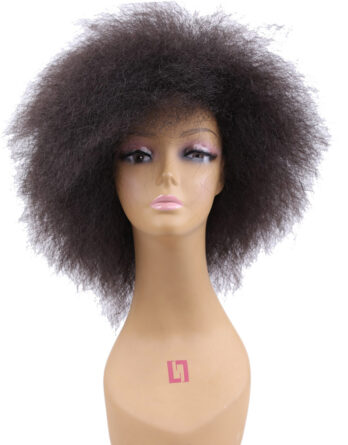 Wigs For Black Women Short Afro Wig Yaki Straight Kinky Curly Wig